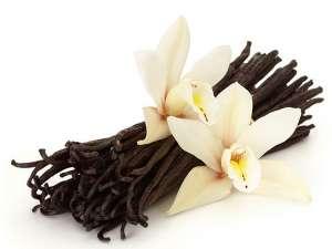 Fragrance:  French Vanilla