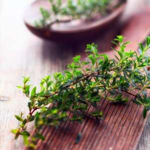 French Thyme  Fragrance Oil