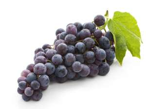 Grape Jolly-Rancher  Fragrance Oil