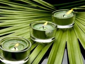 GREEN Candle Dye; Liquid