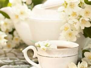 Fragrance:  Jasmine