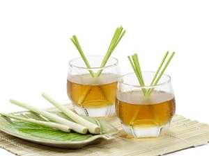 Fragrance:  Lemongrass